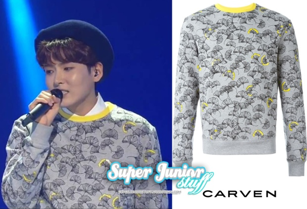 160129 RW Carven Sweatshirt
